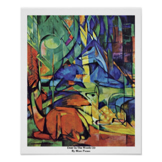 Deer In The Woods (Ii) By Marc Franz Poster
