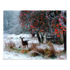 Deer in Winter Card