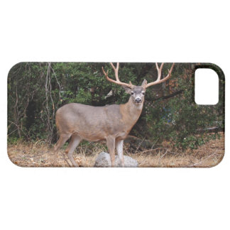 Deer iPhone 5 Custom Case-Mate ID Case For The iPhone 5