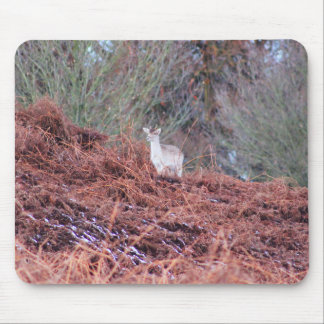 Deer on a hill mouse pad
