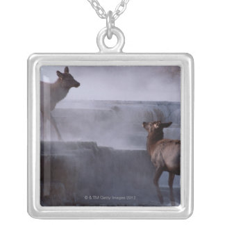 Deer on Rock Formation Silver Plated Necklace