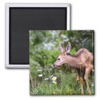 Deer on the Go Square Magnet