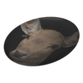 Deer Photo Decor decorative plate-Plate red deer Party Plates