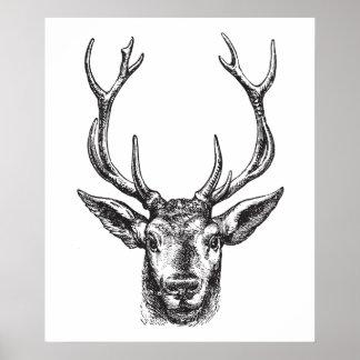 DEER Poster Print Stag, Buck, Elk, Head
