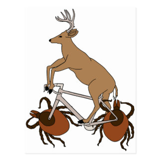 Deer Riding Bike With Deer Tick Wheels Postcard