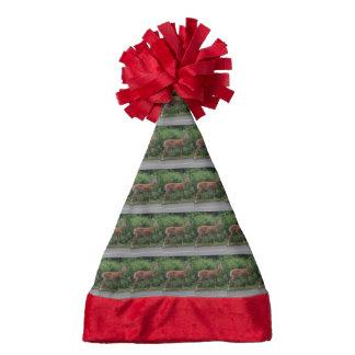 Deer Santa Hat