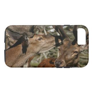 Deer Secrets Phone Case