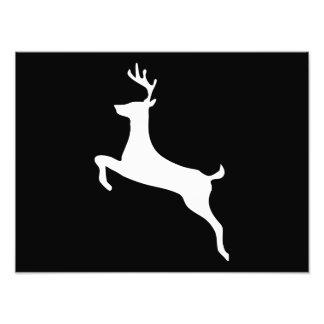 Deer Silhouette Art Photo