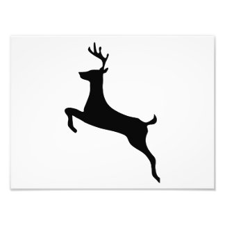 Deer Silhouette Photo