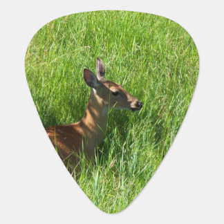 Deer Sitting in the Grass Guitar Pick