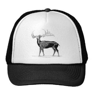 Deer skeleton mesh hats