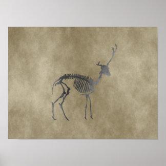 deer skeleton poster