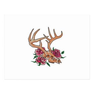 Deer Skull Smaller Postcard