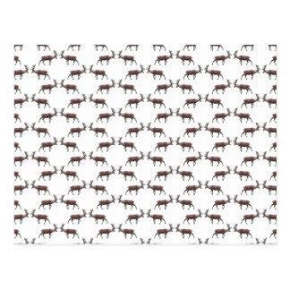 Deer Stag Pattern. Postcard