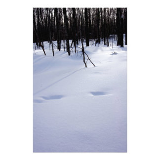 Deer tracks stationery