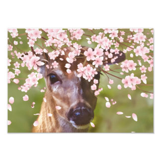 Deer Under Cherry Tree Photo Print