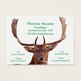Deer visiting cards
