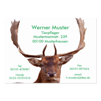 Deer visiting cards pack of chubby business cards