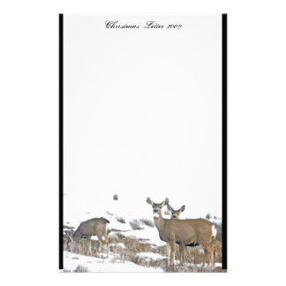 Deer Wildlife Animals Fawn Photography Custom Stationery