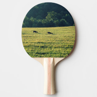Deers Grazing Ping Pong Paddle