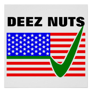 DEEZ NUTS for President 2016 Poster