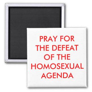 Defeat Homosexual Agenda Square Magnet