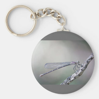 defining serenity key ring