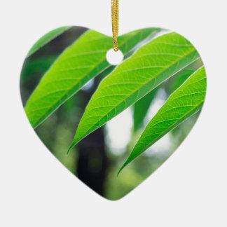 Defocused and blurred branch ailanthus ceramic heart decoration