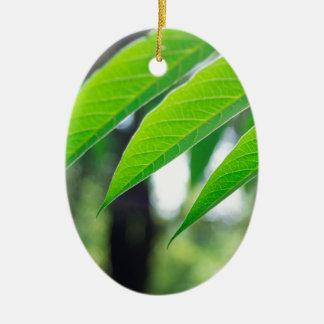 Defocused and blurred branch ailanthus ceramic oval decoration