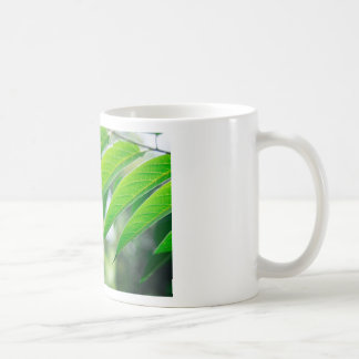 Defocused and blurred branch ailanthus coffee mug