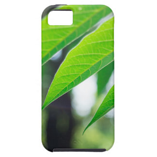 Defocused and blurred branch ailanthus iPhone 5 cases