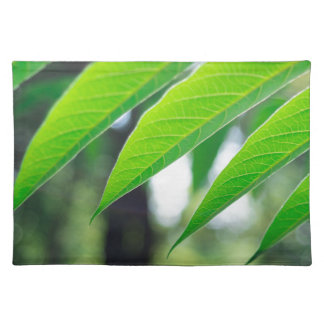 Defocused and blurred branch ailanthus placemat