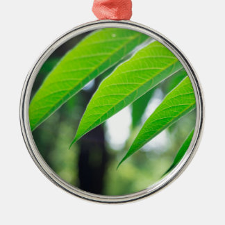 Defocused and blurred branch ailanthus Silver-Colored round decoration