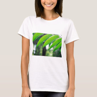 Defocused and blurred branch ailanthus T-Shirt
