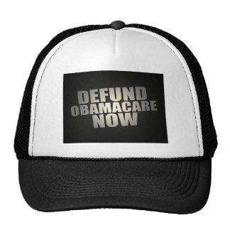 Defund Obamacare Now Cap