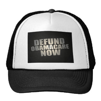 Defund Obamacare Now Mesh Hat