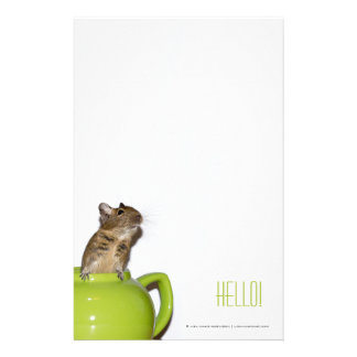 Degu in a Teapot 'Hello' Custom Stationery