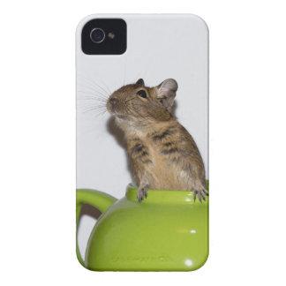 Degu in Green Teapot iPhone 4 Cases