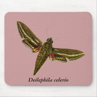 Deilephila celerio mouse pad