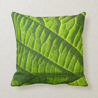 Dekokissen cool, green sheet sample throw pillow