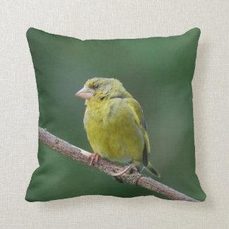 Dekokissen green finch - photo: Jean Louis Glineur Throw Pillow