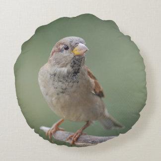 Dekokissen sparrow sparrow photo Jean Louis Round Cushion