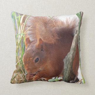 Dekokissen squirrel Squirrel Écureuil Cushion