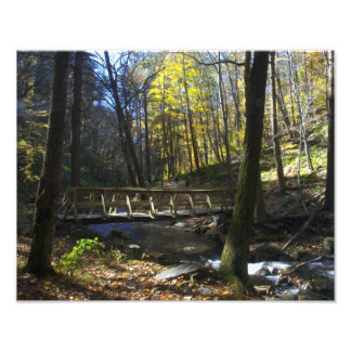 Delaware Water Gap - Dunnfield Creek Photo Print