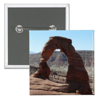 delicate arch pins