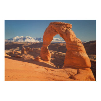 Delicate Arch With The Lasalle Mountains Beyond Wood Canvas