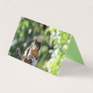 Delicate balance card