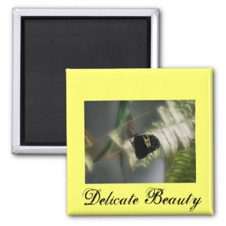 Delicate Beauty Square Magnet