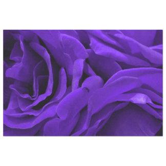 Delicate bright purple roses floral photo tissue paper