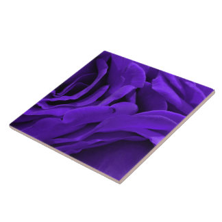 Delicate bright purple roses flower photo ceramic tile